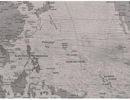 菲林格尔 经典世界版图强化复合地板