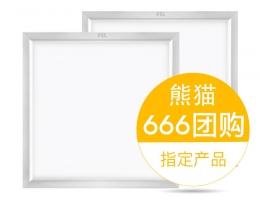 佛山—厨卫扣板灯300*300【666团购指定产品】