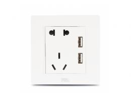 佛山电工·F22白 二位USB+10A二三极插座X